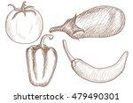 vegetable mix. hand drawn... | Shutterstock .eps vector #479490301