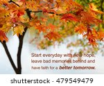 life and inspiration quote... | Shutterstock . vector #479549479
