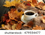 autumn  fall leaves  hot... | Shutterstock . vector #479554477