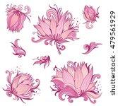vector pink lotus flowers set   ... | Shutterstock .eps vector #479561929
