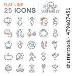 set vector line icons in flat... | Shutterstock .eps vector #479607451