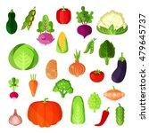 vegetable summer harvest  vegan ...   Shutterstock .eps vector #479645737