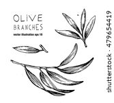 set of vector olive branch and... | Shutterstock .eps vector #479654419