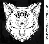 black cat head portrait with...   Shutterstock .eps vector #479830135