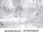 Winter Landscape Seen Through...