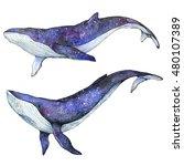set of cosmic whales  ... | Shutterstock . vector #480107389