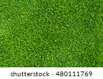 green grass natural  background ... | Shutterstock . vector #480111769