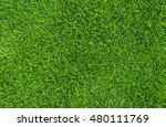 green grass natural  background ...   Shutterstock . vector #480111769