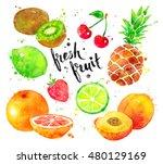 hand painted watercolor... | Shutterstock . vector #480129169