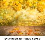 maple leaves on autumn... | Shutterstock . vector #480151951