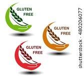 vector gluten free symbols...   Shutterstock .eps vector #480206077