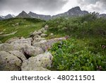 mountain valley with a stone... | Shutterstock . vector #480211501
