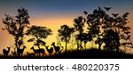 a forest landscape with trees... | Shutterstock .eps vector #480220375