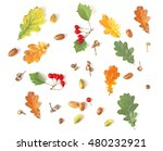 autumn plants flat lay pattern... | Shutterstock . vector #480232921