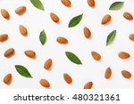 almonds flat lay pattern   Shutterstock . vector #480321361