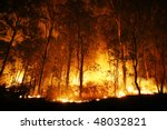 A Bushfire Burning Orange And...