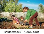 the children dig up the potato...   Shutterstock . vector #480335305