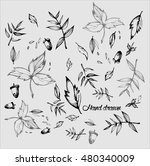 vector leaves background  hand... | Shutterstock .eps vector #480340009