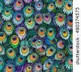 vector color peacock feather... | Shutterstock .eps vector #480374575