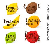 set of hand drawn logo  labels... | Shutterstock .eps vector #480408619