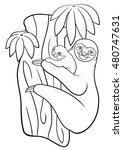 coloring pages. mother sloth... | Shutterstock .eps vector #480747631
