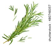 fresh rosemary isolated on a... | Shutterstock . vector #480748357