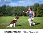 Stock photo woman teaches her dog a command 480762211