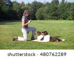 Woman Training Two Dogs In A...