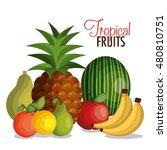 set cartoon fruits tropicals... | Shutterstock .eps vector #480810751