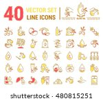 set vector icons graphic thin... | Shutterstock .eps vector #480815251