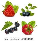 photo realistic vector... | Shutterstock .eps vector #48083101