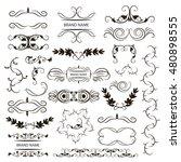 set of vector graphic elements... | Shutterstock .eps vector #480898555