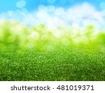 green grass blurred background | Shutterstock . vector #481019371