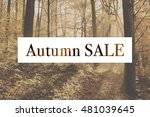 autumn sale  signboard on the... | Shutterstock . vector #481039645