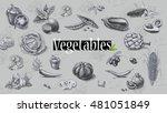 organic food 2 | Shutterstock . vector #481051849