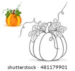 pumpkin for coloring book vector | Shutterstock .eps vector #481179901