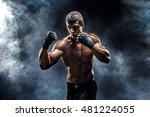 muscular kick box or muay thai...   Shutterstock . vector #481224055