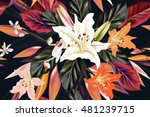 fashion vector pattern with... | Shutterstock .eps vector #481239715