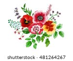 bouquet of flowers and leaves... | Shutterstock . vector #481264267