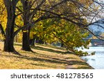 Autumnal Landscape With...