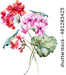 Watercolor Vector Floral...
