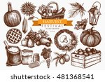 vector set of hand drawn autumn ... | Shutterstock .eps vector #481368541