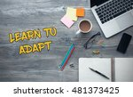 Small photo of Learn To Adapt