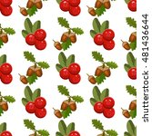 seamless pattern with cranberry ... | Shutterstock .eps vector #481436644