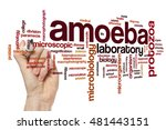 Small photo of Amoeba word cloud concept