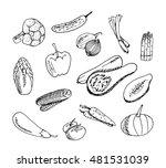 vector illustration.vegetables...