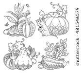vector set garden composition... | Shutterstock .eps vector #481546579
