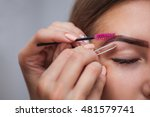 master makeup corrects  and... | Shutterstock . vector #481579741