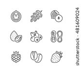 thin line icons set about nuts  ... | Shutterstock .eps vector #481609024