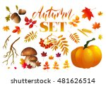 typographic autumn season set... | Shutterstock .eps vector #481626514